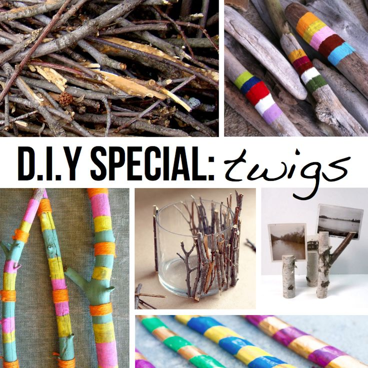 DIY Special TWIGS: Crafts For Kids, Diy Ideas, Special Twig, Paintings Twig, Crafts Diy Help, Twig Crafts, Diy Bracelet, Decor Twig, Diy Special