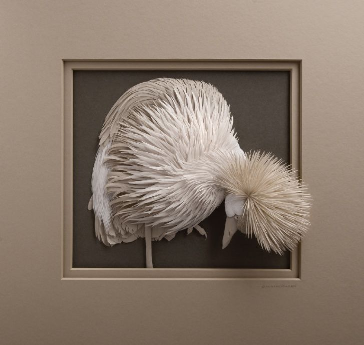 The paper sculptures shown in this gallery have been created by paper sculpture artist Calvin Nicholls. Subjects include bears, birds, owls, wolves, ducks trees, pine trees, moose and other animals. His sculptures are all made from archival water colour paper in the low relief or bas relief style.