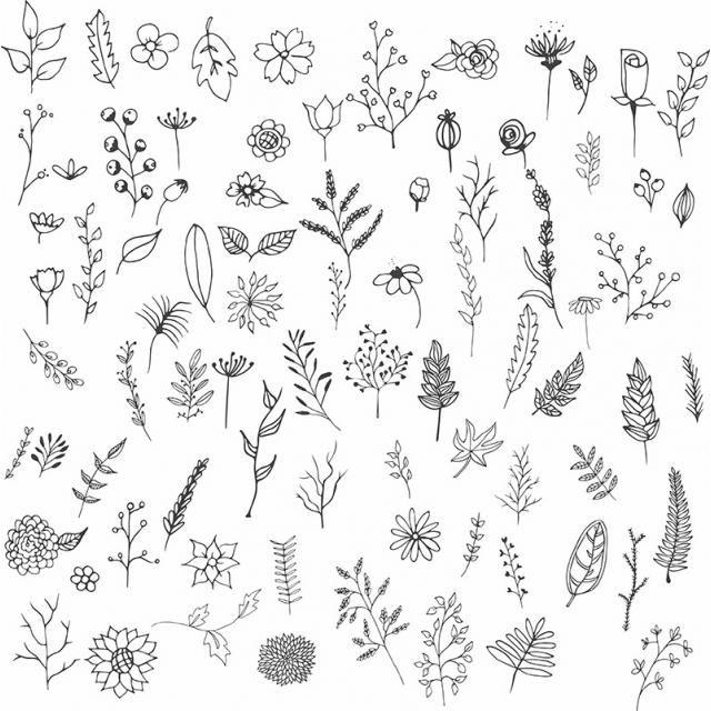 Collection De Fleurs Dessinees A La Main Dessine A La Main Fleurs Fleur Png Et Vecteur Pour Telechargement Gratuit Hand Drawn Flowers Flower Drawing How To Draw Hands