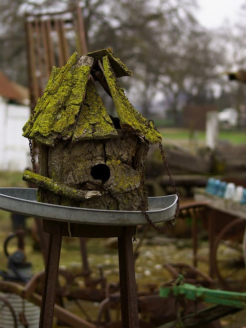 318 Best Bird Houses And Baths Images On Pinterest