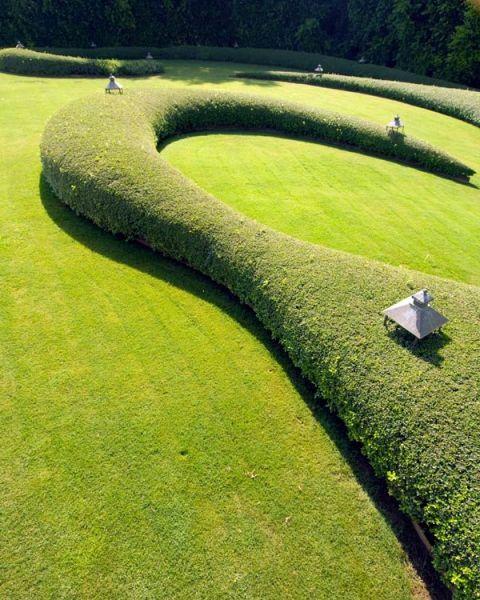 elledecor.it. beautiful idea for sculptural hedge in yard/garden.