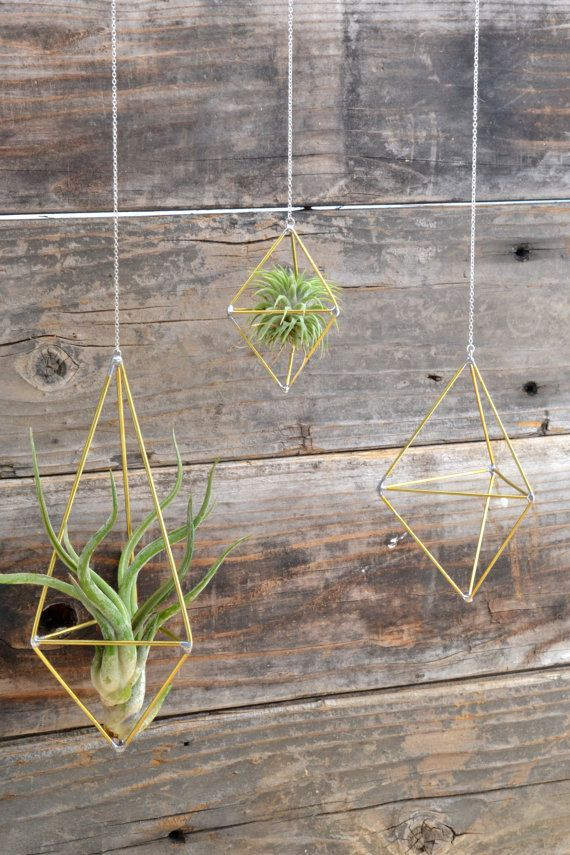 Set of 3  Air Plant Cages // Himmeli by megamyers on Etsy, $80.00