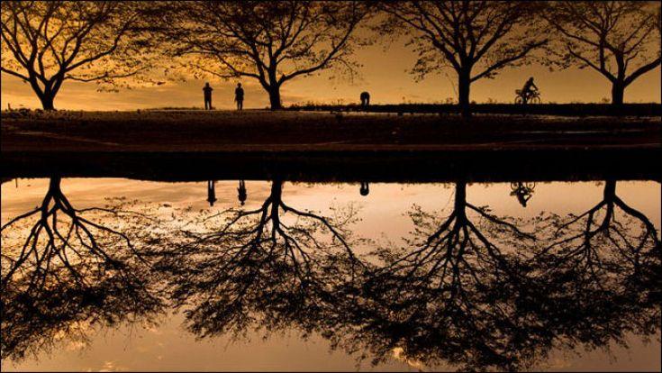 Surpreendentes fotografias com reflexos 18