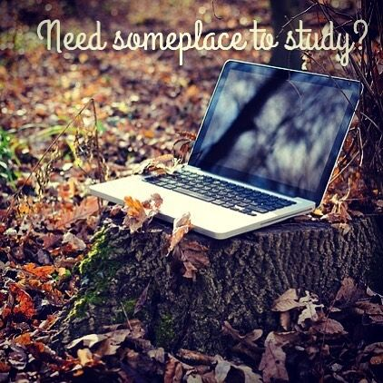 Need a study space with free WiFi in Camrose? MainStreet 1908, at your service!