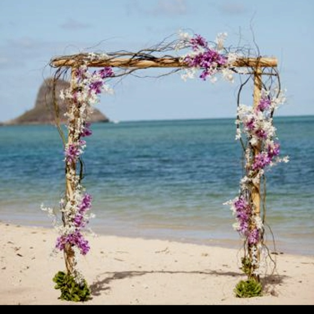 Flowers On A Beach Wedding Altar: 75 Best Scarlett's Beach Weddings Images On Pinterest