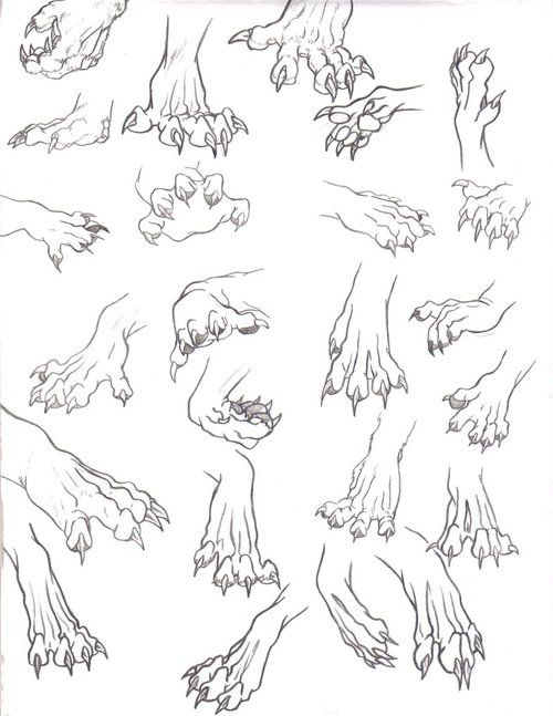 Wolf hands for Mori