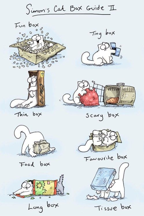 Simon's Cat Box Guide No. 2  I Love Simon's cat but he missed out #HugBox! Lol :-) www.hugbox.co.uk