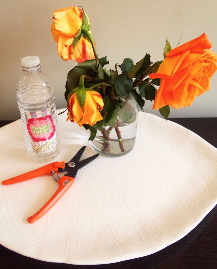 Want to revive your roses? Put a dash of flower food (a