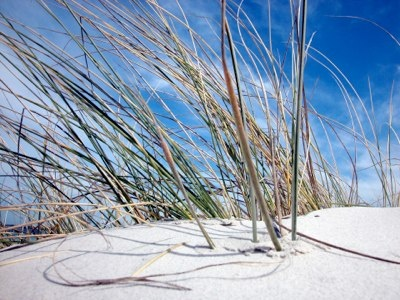 Whitetest sand in the world