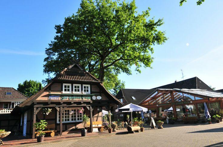 AKZENT Hotel Zur Grünen Eiche in Bispingen