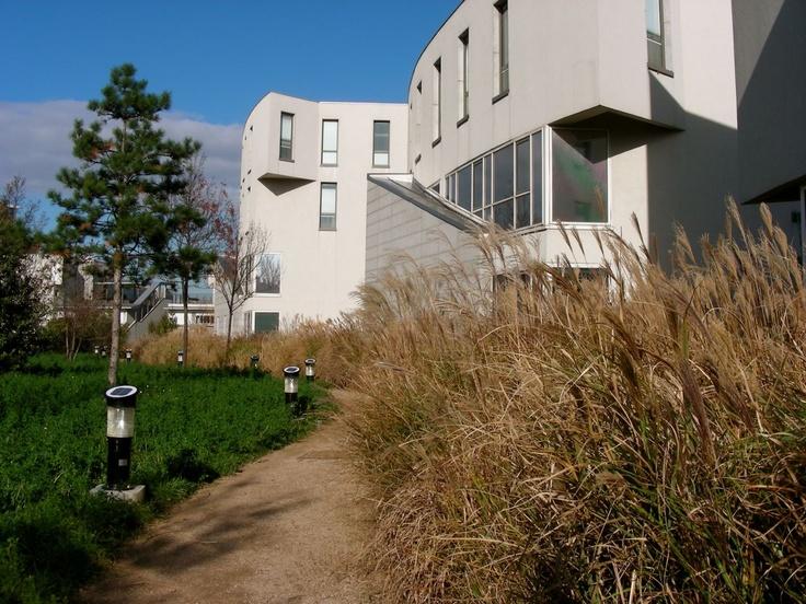 les 97 meilleures images propos de gilles cl ment jardinier paysagiste sur pinterest. Black Bedroom Furniture Sets. Home Design Ideas