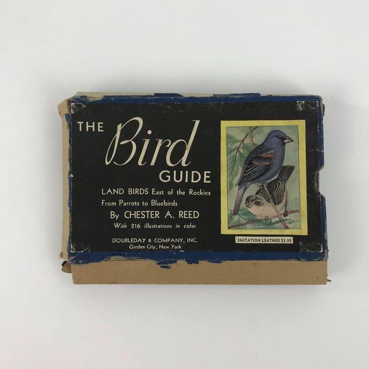 Vintage Pocket Field Bird Guide Land Birds East Of The Rockies Chester A. Reed