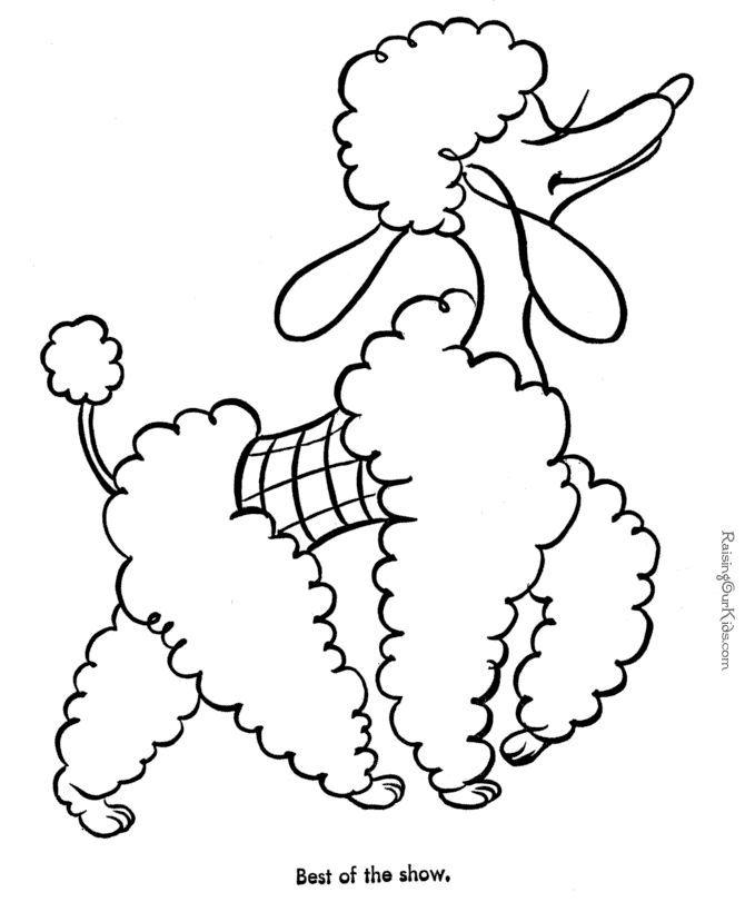 Cute poodle coloring pages ~ 13 best Poodle Dog images on Pinterest | Poodles, Poodle ...