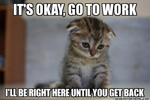 It's okay, go to work I'll be right here until you get back - Sad kitty | Generator Meme