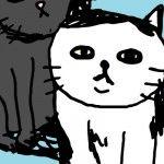 1101_27_cat_welookatyou