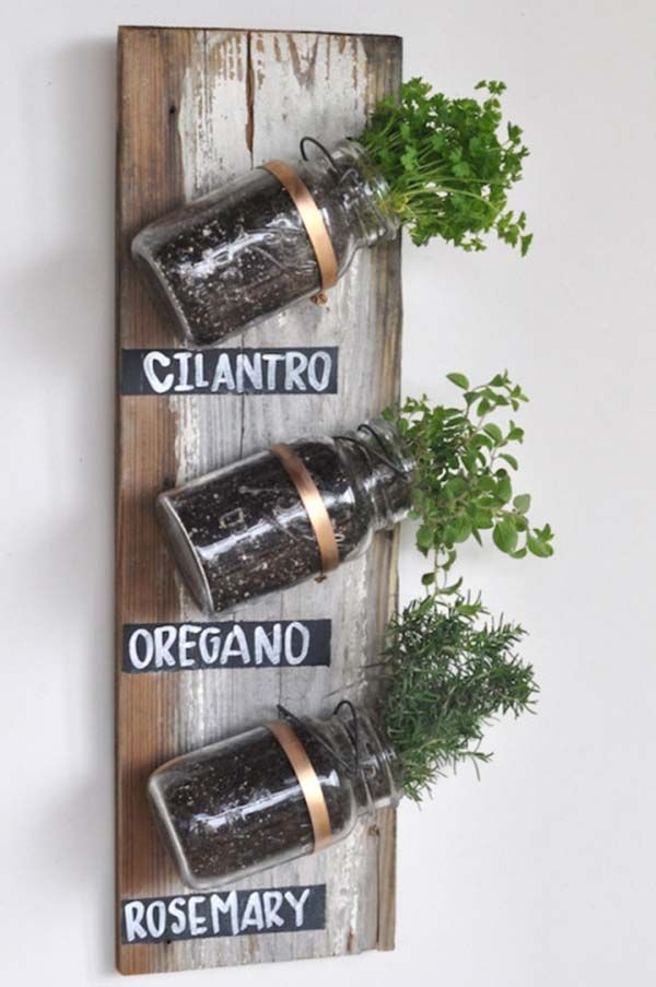 Great indoor herb garden jar wall idea. We should make a couple of these!