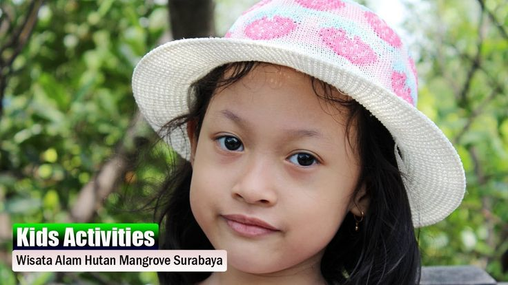 Liburan ke Wisata Alam Hutan Mangrove Surabaya | Sungguh Menyenangkan