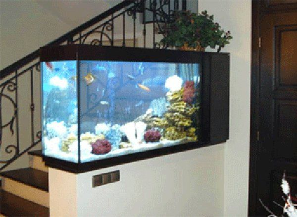 Best 25 fish tank themes ideas on pinterest fish tank for Fish tank calculator