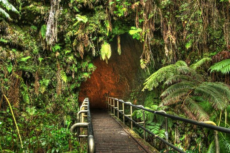 Hike through Thurston Lava Tube, Hawaii Volcanoes National Park, Big Island, Hawaii - Bucket List Dream from TripBucket