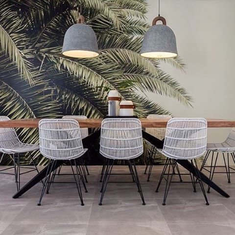 rebel walls design wallpaper palms