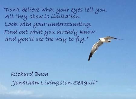 Resultado de imagem para jonathan livingston seagull quotes