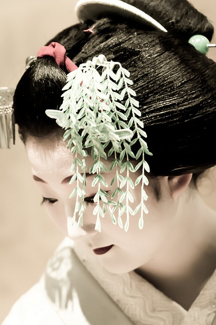 Japanese hair accessory, Kanzashi. I believe this one is mimicking weeping willow.