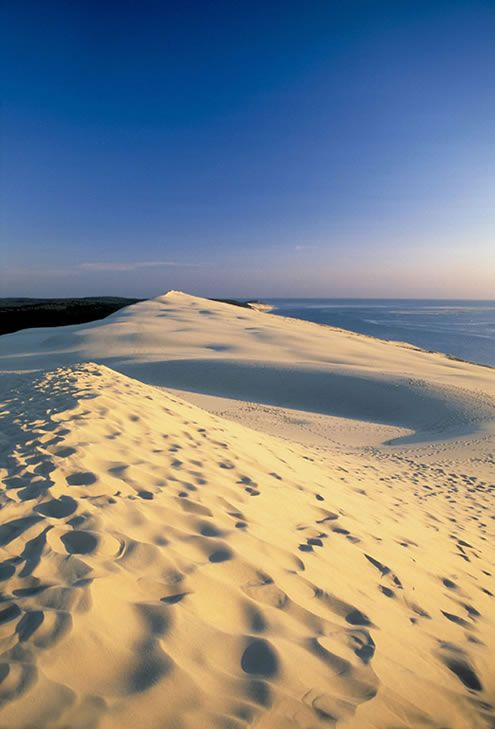 La dune du Pilat (Pyla) - Arcachon,France.  One of the most amazing places I'd been