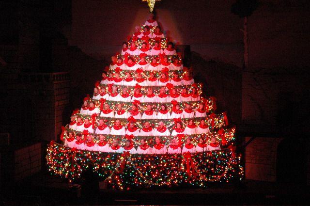 Rotating Christmas Tree Stand For Live Trees