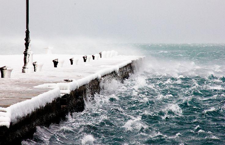 Trieste - Il molo aggredito dalla Bora