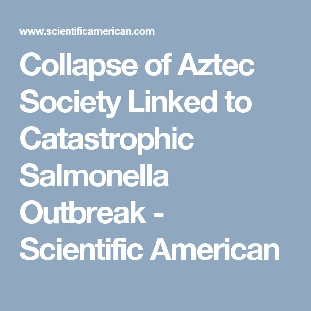 Collapse of Aztec Society Linked to Catastrophic Salmonella Outbreak - Scientific American