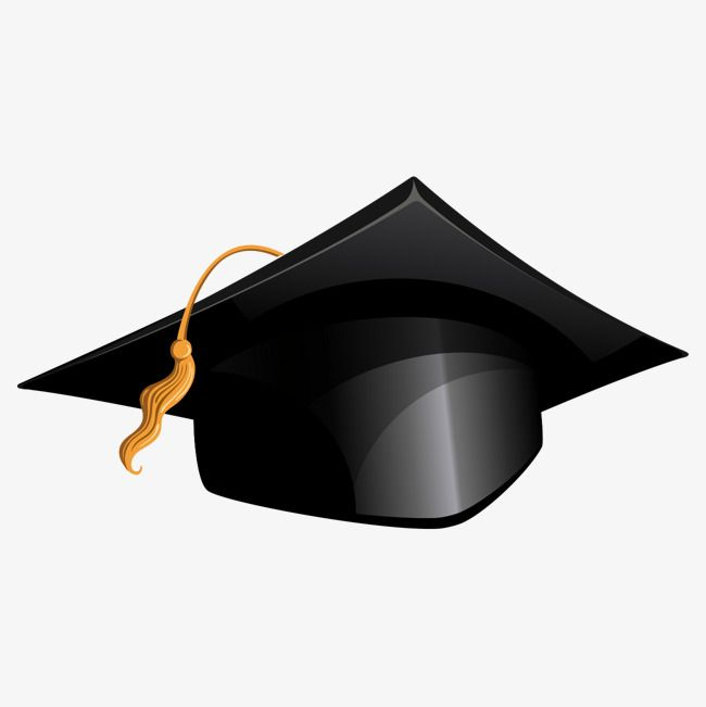 Bachelor Graduate Hat Bachelors Degree Graduation Degree Hat University Graduation