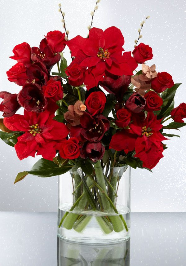 Festive Beauty Bouquet Marks Amp Spencer There Are Few Plants More Festive Than Poinsettias This