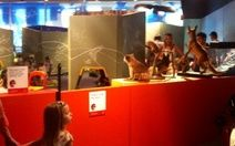 Kids Space @ Australian Museum