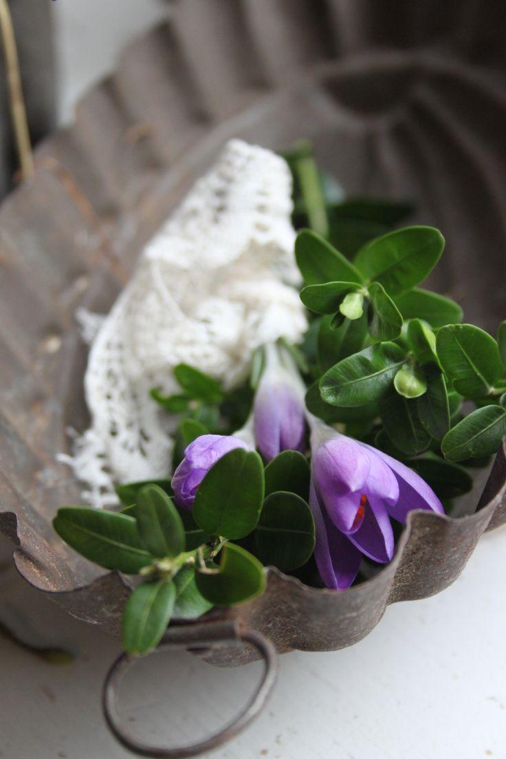 Voorjaar in brocante bakvorm