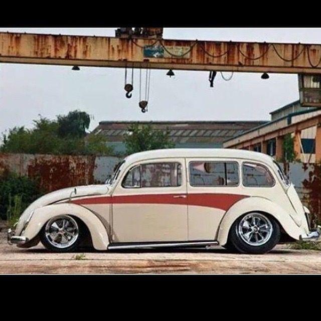 bug/van