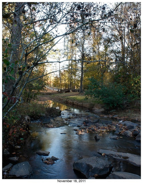 Mary Sewell Flat Rock Park Trees by Visit Columbus GA, via Flickr