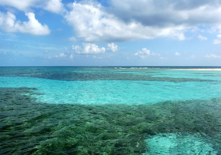 Best Rated Shore Excursions & Cruise Excursions in Belize