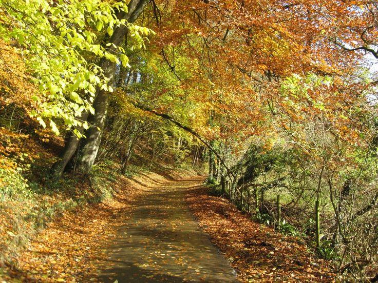 Brak pomysłów na październikowy weekend? Jesień jest piękna, ruszaj w podróż. Na moim blogu garść inspiracji.  #jesień #weekend #pomysły #podróże