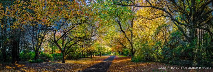 Autumn's Rich Tapestry - Mount Wilson Australia by Gary Hayes on 500px