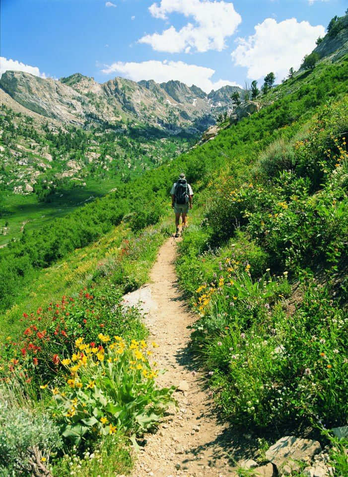 Hiking the Sierra Nevada - many great trails I discovered this summer!
