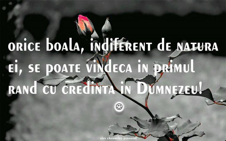http://www.facebook.com/alexchermeleu