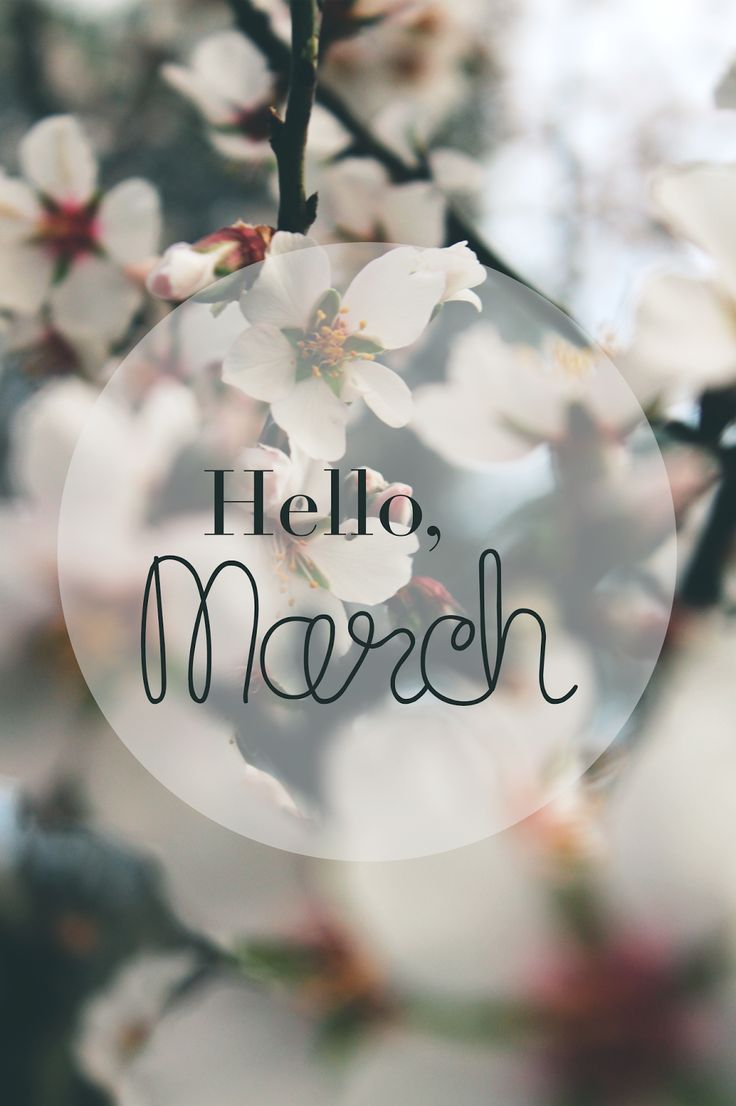 Hello, March - Morgane LB