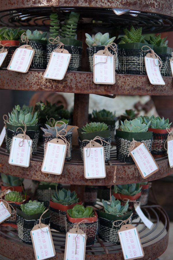 If you have outdoorsy friends and family, and are having a rustic wedding this could be a cute favor.