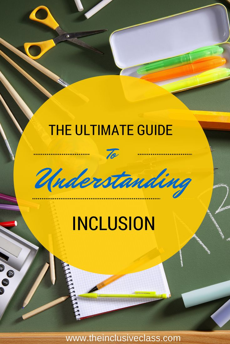 The Inclusive Class: The Ultimate Guide to Understanding Inclusion