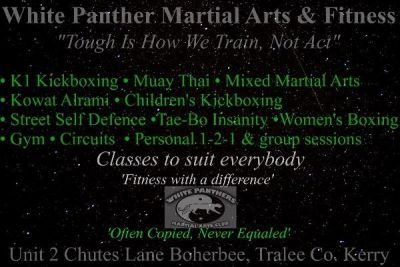 Martial Arts and Fitness Training in Kerry