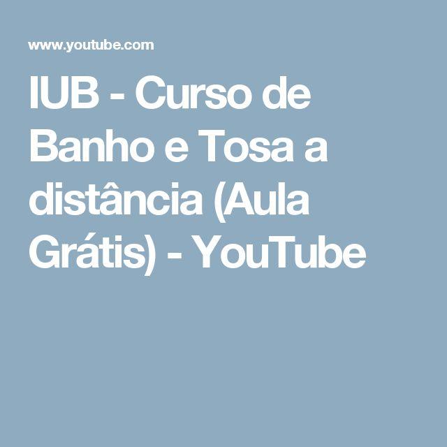 IUB - Curso de Banho e Tosa a distância (Aula Grátis) - YouTube