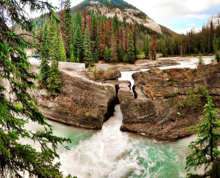 Natural bridge (Yoho National Park, British Columbia)