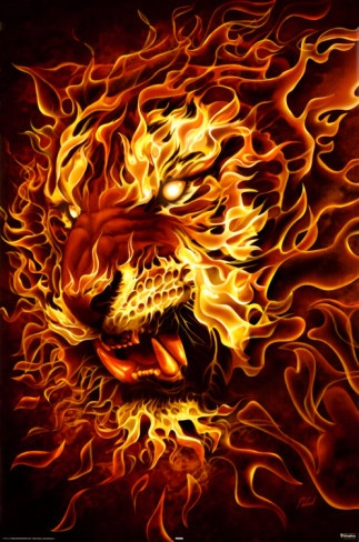 Fire Lion Poster