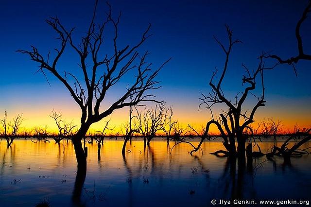 Lake Pamamaroo, NSW, Australia