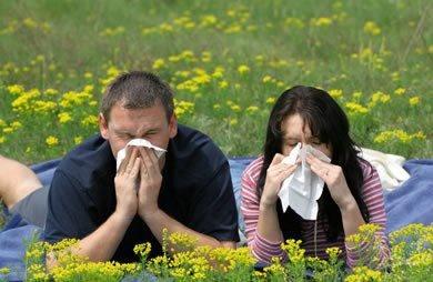 """In general alergiile sezoniere apar in perioada de primavara – toamna, odata cu aparitia si persistenta polenurilor de plante si arbori.https://www.facebook.com/photo.php?fbid=10151364920806612=a.478744256611.261733.290546871611=1"